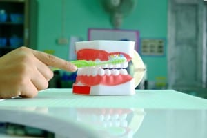 Dentistry Courses: what are they really like?