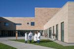 medicine at humanitas university